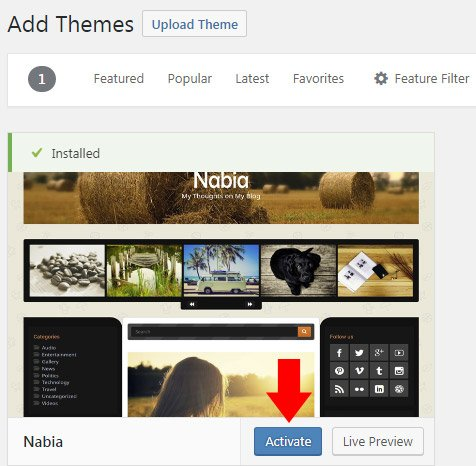 wordpress org theme installed